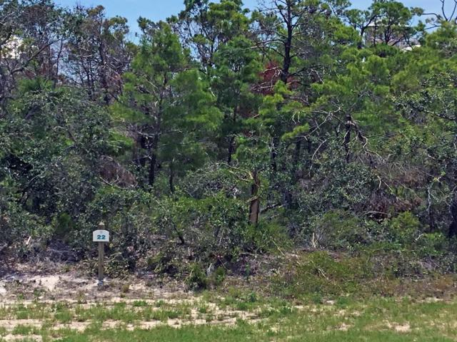 Lot 22 Cape San Blas Rd, CAPE SAN BLAS, FL 32456 (MLS #302254) :: The Naumann Group Real Estate, Coastal Office