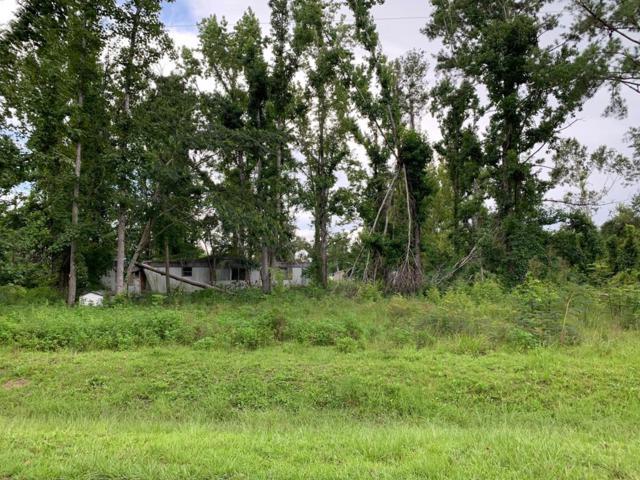 385 Burgess Creek Rd, WEWAHITCHKA, FL 32465 (MLS #302258) :: Coastal Realty Group
