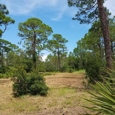 965 W Bayshore Dr, ST. GEORGE ISLAND, FL 32328 (MLS #302303) :: Coastal Realty Group
