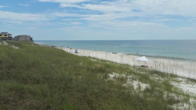 6 Gulf Hibiscus Dr Lot 6 Hibiscus, CAPE SAN BLAS, FL 32456 (MLS #302337) :: Anchor Realty Florida
