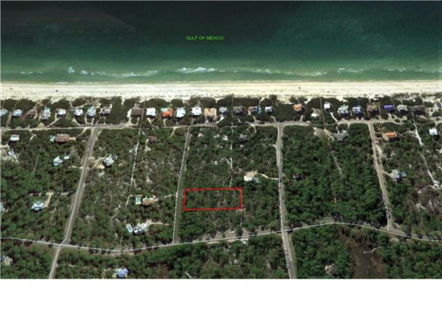 1656 Hawthorne Ln, ST. GEORGE ISLAND, FL 32328 (MLS #302394) :: Coastal Realty Group