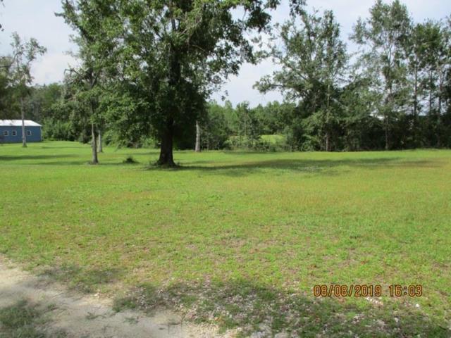 00 Bryant Landing Rd, WEWAHITCHKA, FL 32465 (MLS #302406) :: Coastal Realty Group