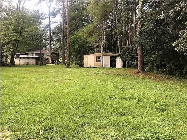 153 Duck Ave, WEWAHITCHKA, FL 32465 (MLS #302426) :: Anchor Realty Florida