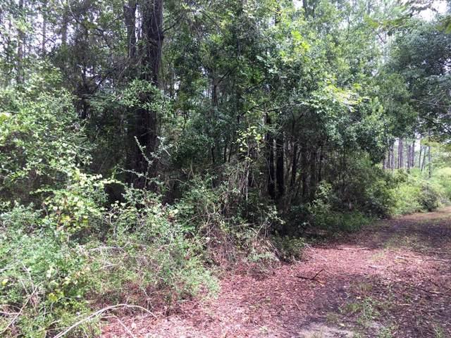 1704 Baytree Ln, CARRABELLE, FL 32322 (MLS #302568) :: Coastal Realty Group