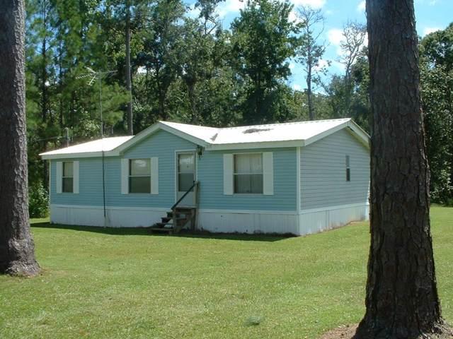 738 Bryant Landing Rd, WEWAHITCHKA, FL 32465 (MLS #302602) :: Coastal Realty Group