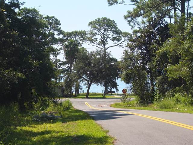 119 Georgia St, CARRABELLE, FL 32322 (MLS #302704) :: Coastal Realty Group