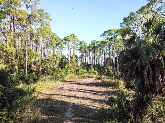 557 E Pine Ave, ST. GEORGE ISLAND, FL 32328 (MLS #302713) :: Berkshire Hathaway HomeServices Beach Properties of Florida