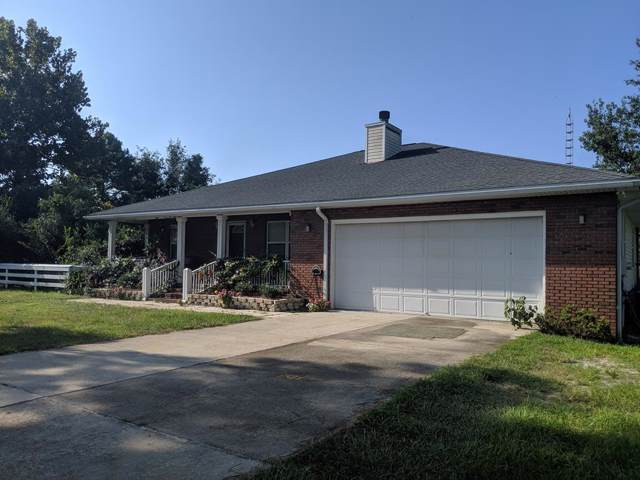 1002 Bluff Rd, APALACHICOLA, FL 32320 (MLS #302778) :: Coastal Realty Group