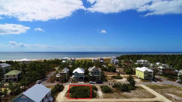 59 Loggerhead Ln, CAPE SAN BLAS, FL 32456 (MLS #302806) :: Coastal Realty Group