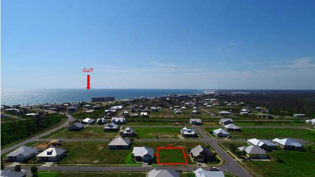 111 St Christopher St, MEXICO BEACH, FL 32456 (MLS #302848) :: The Naumann Group Real Estate, Coastal Office