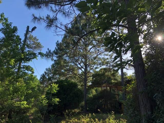 2504 Oak St, CARRABELLE, FL 32322 (MLS #302875) :: Coastal Realty Group