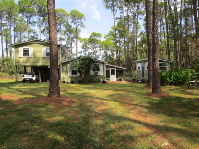 55 Lakeview Dr, ALLIGATOR POINT, FL 32346 (MLS #302883) :: Coastal Realty Group