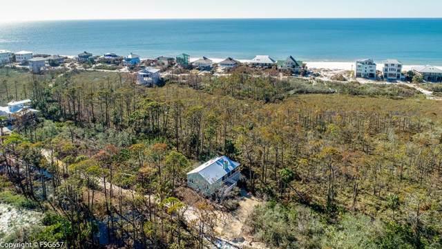 373 Bent Tree Rd, CAPE SAN BLAS, FL 32456 (MLS #302926) :: Coastal Realty Group