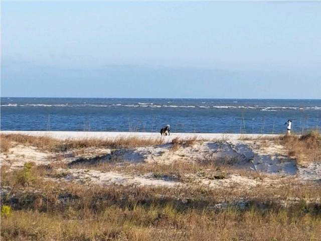 2258 Indian  Pass Rd, CAPE SAN BLAS, FL 32456 (MLS #302969) :: Berkshire Hathaway HomeServices Beach Properties of Florida