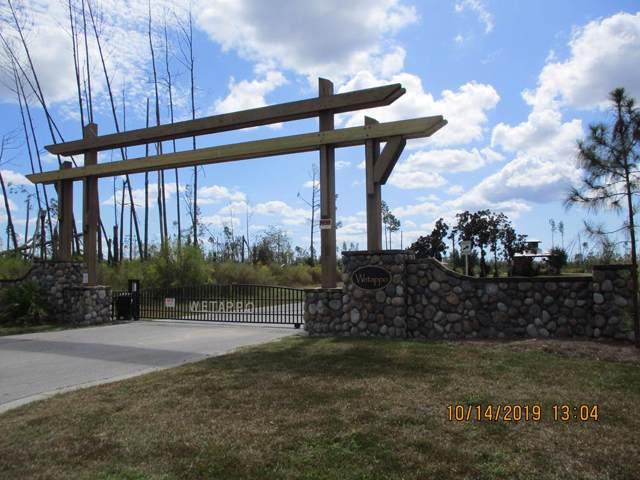 131 Creek Pine Cr, WEWAHITCHKA, FL 32465 (MLS #302986) :: Coastal Realty Group