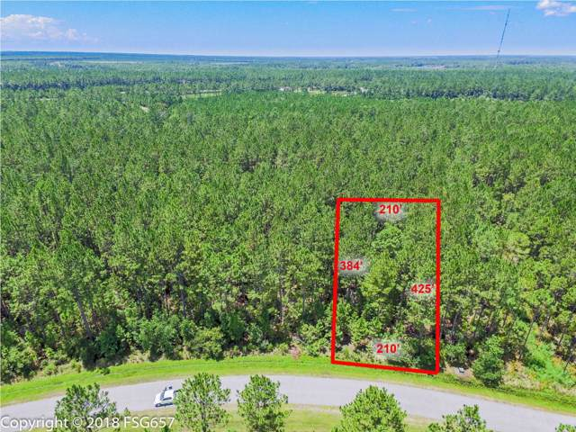142 Ibis Dr., WEWAHITCHKA, FL 32465 (MLS #303020) :: Coastal Realty Group