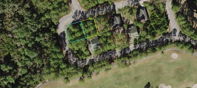 130 Skimmer Ln, CARRABELLE, FL 32322 (MLS #303051) :: CENTURY 21 Coast Properties