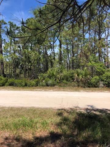 1009 Porter St, ST. GEORGE ISLAND, FL 32328 (MLS #303126) :: Coastal Realty Group