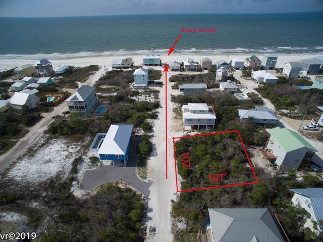 137 Seahorse Ln, CAPE SAN BLAS, FL 32456 (MLS #303128) :: Coastal Realty Group
