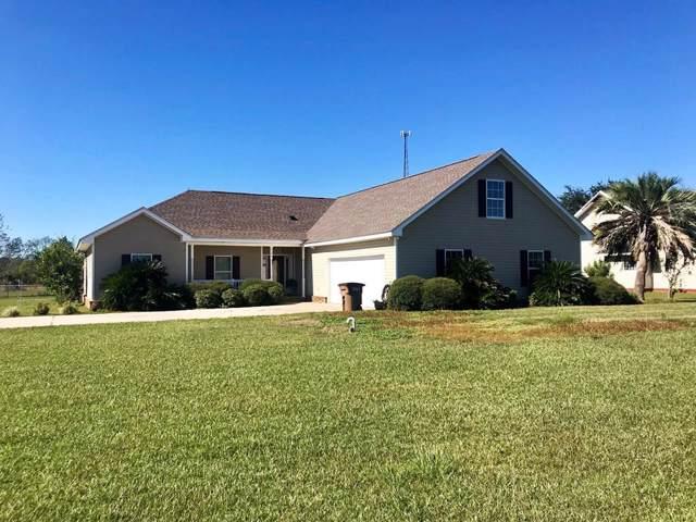 4173 Hwy  71, WEWAHITCHKA, FL 32465 (MLS #303201) :: Coastal Realty Group