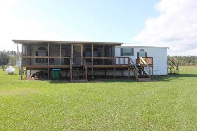 325 Foxchase Dr, WEWAHITCHKA, FL 32465 (MLS #303208) :: Coastal Realty Group