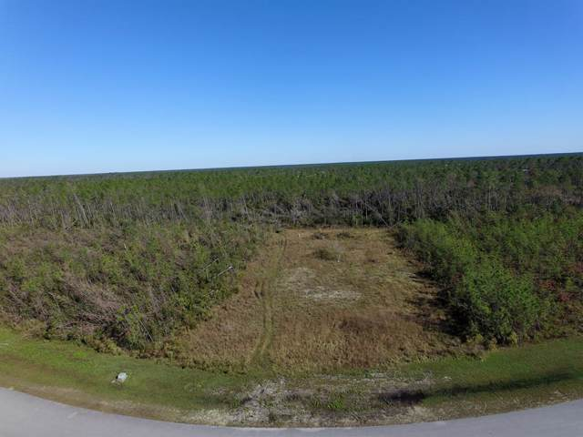 16 Wide Water Cir, WEWAHITCHKA, FL 32465 (MLS #303229) :: Coastal Realty Group