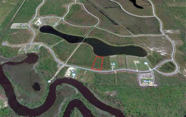70 Wide Water Cir, WEWAHITCHKA, FL 32465 (MLS #303233) :: Coastal Realty Group
