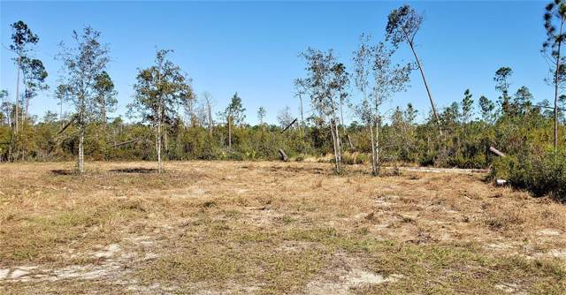 8 & 9 Cr 386 N, WEWAHITCHKA, FL 32465 (MLS #303299) :: Coastal Realty Group