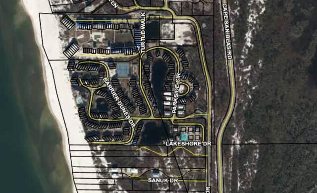 204 Lake Shore Dr, CAPE SAN BLAS, FL 32456 (MLS #303305) :: Coastal Realty Group