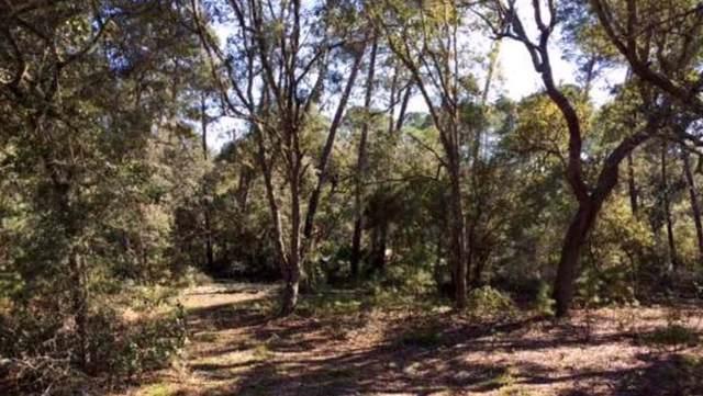 111 Scipio Landing Rd, APALACHICOLA, FL 32320 (MLS #303328) :: Coastal Realty Group