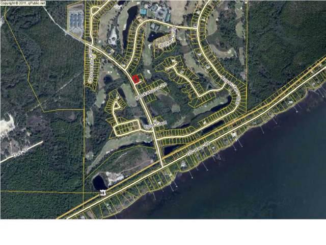 101 Green Heron Cir, CARRABELLE, FL 32322 (MLS #303458) :: Coastal Realty Group