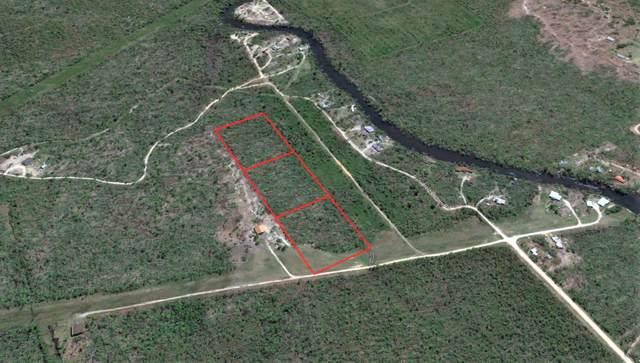 14225 Nw Henry Grantham Rd, ALTHA, FL 32421 (MLS #303479) :: Coastal Realty Group
