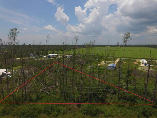 5 Cr 386 N, WEWAHITCHKA, FL 32465 (MLS #303487) :: The Naumann Group Real Estate, Coastal Office