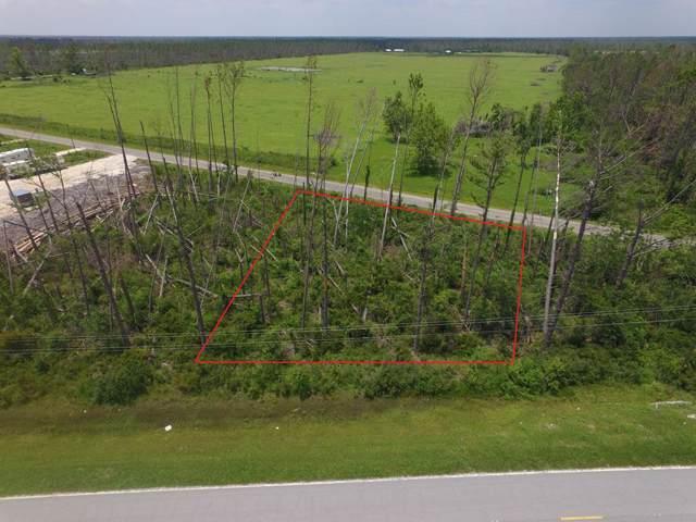 6 Borders Rd, WEWAHITCHKA, FL 32465 (MLS #303488) :: The Naumann Group Real Estate, Coastal Office
