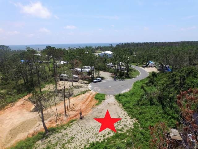175 Dixie View Ln, PORT ST. JOE, FL 32456 (MLS #303509) :: Coastal Realty Group