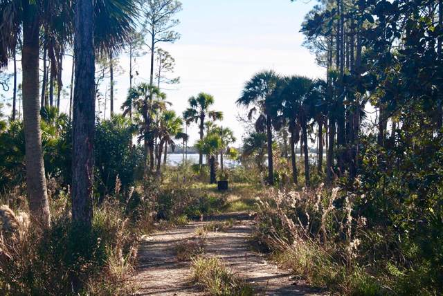 Lot 9 Cr 30-A, PORT ST. JOE, FL 32456 (MLS #303601) :: Coastal Realty Group