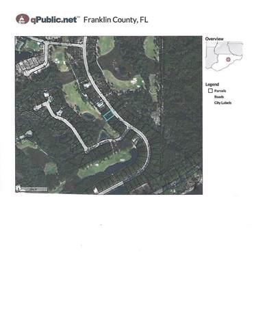 207 Royal Tern Way, CARRABELLE, FL 32323 (MLS #303659) :: Coastal Realty Group