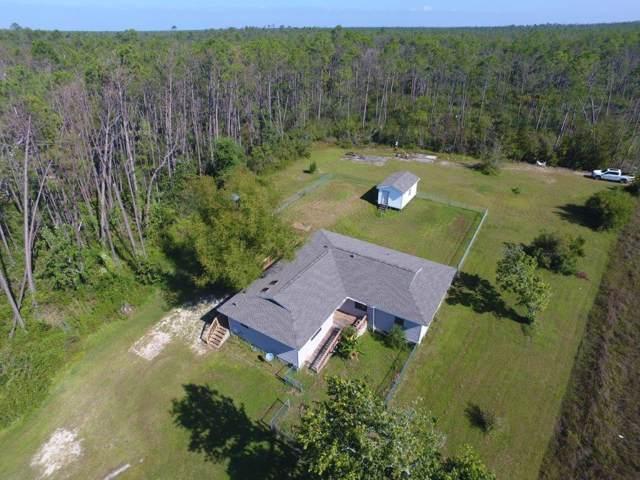 8479 Cr 386 N, WEWAHITCHKA, FL 32465 (MLS #303675) :: Coastal Realty Group