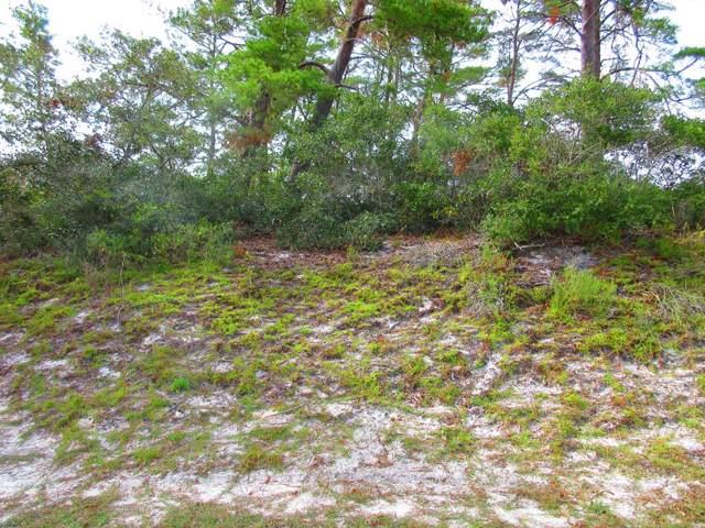409 Se 9Th St, CARRABELLE, FL 32322 (MLS #303690) :: The Naumann Group Real Estate, Coastal Office