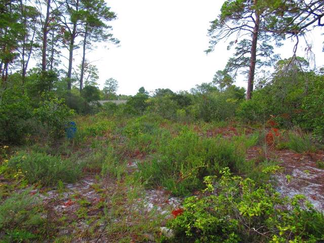00 9TH ST, CARRABELLE, FL 32322 (MLS #303691) :: Coastal Realty Group
