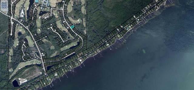 210 Royal Tern Way, CARRABELLE, FL 32322 (MLS #303702) :: The Naumann Group Real Estate, Coastal Office