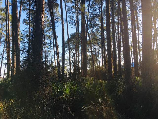 2796 Hwy 98 E, CARRABELLE, FL 32322 (MLS #303710) :: Coastal Realty Group