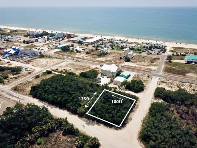 252 W Pine Ave, ST. GEORGE ISLAND, FL 32328 (MLS #303711) :: Coastal Realty Group