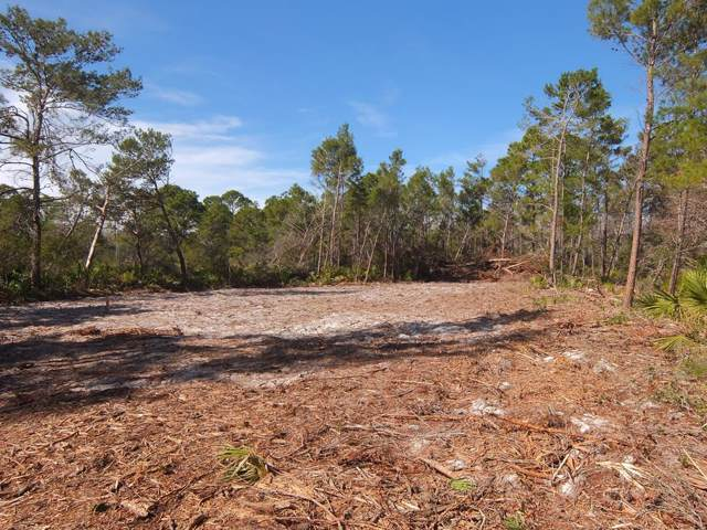 2119 Messer Rd, CARRABELLE, FL 32322 (MLS #303730) :: Berkshire Hathaway HomeServices Beach Properties of Florida