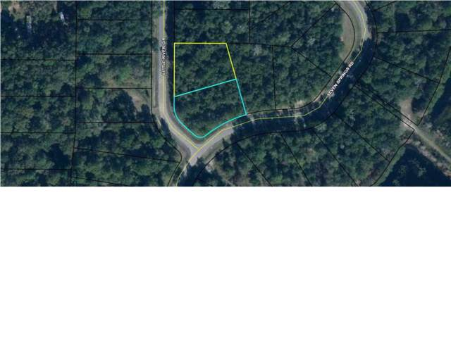 0 Land Dr Lots 1&12, WEWAHITCHKA, FL 32465 (MLS #303800) :: The Naumann Group Real Estate, Coastal Office