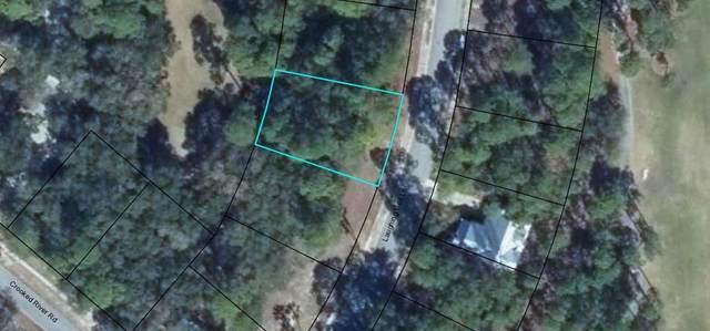 113 Laughing Gull Ln, CARRABELLE, FL 32322 (MLS #303832) :: The Naumann Group Real Estate, Coastal Office