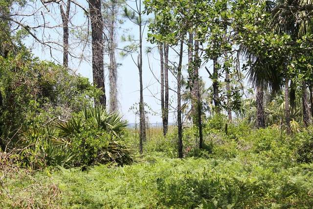 1033 E Pine St #4, ST. GEORGE ISLAND, FL 32328 (MLS #303868) :: Coastal Realty Group