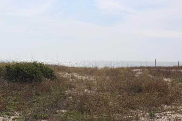 725 E Gorrie Dr, ST. GEORGE ISLAND, FL 32328 (MLS #303905) :: Coastal Realty Group