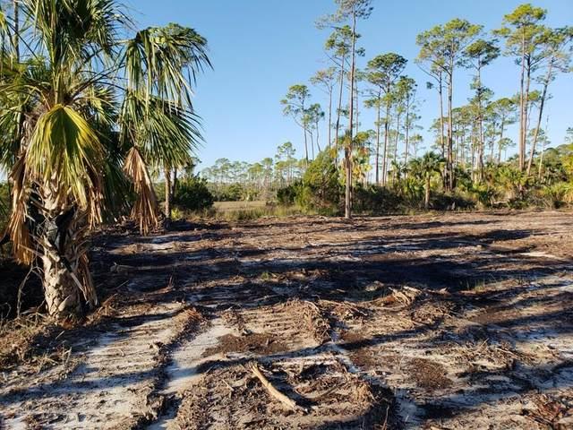 0 Cr 30-A, CAPE SAN BLAS, FL 32456 (MLS #303922) :: Berkshire Hathaway HomeServices Beach Properties of Florida