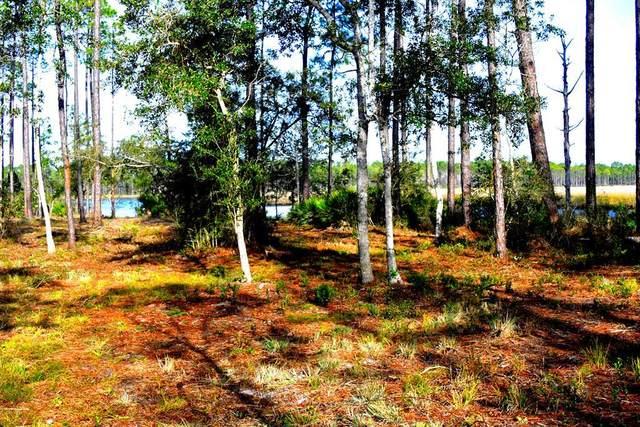 352 Jay Jay Way, CARRABELLE, FL 32322 (MLS #303925) :: Coastal Realty Group